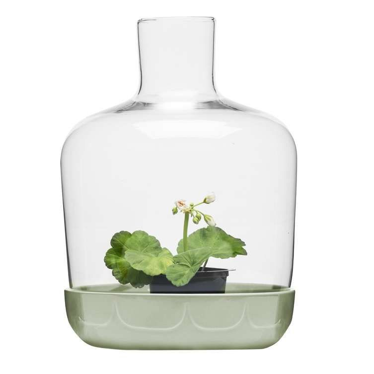 Make Designed Objects : Sagaform Glass Greenhouse