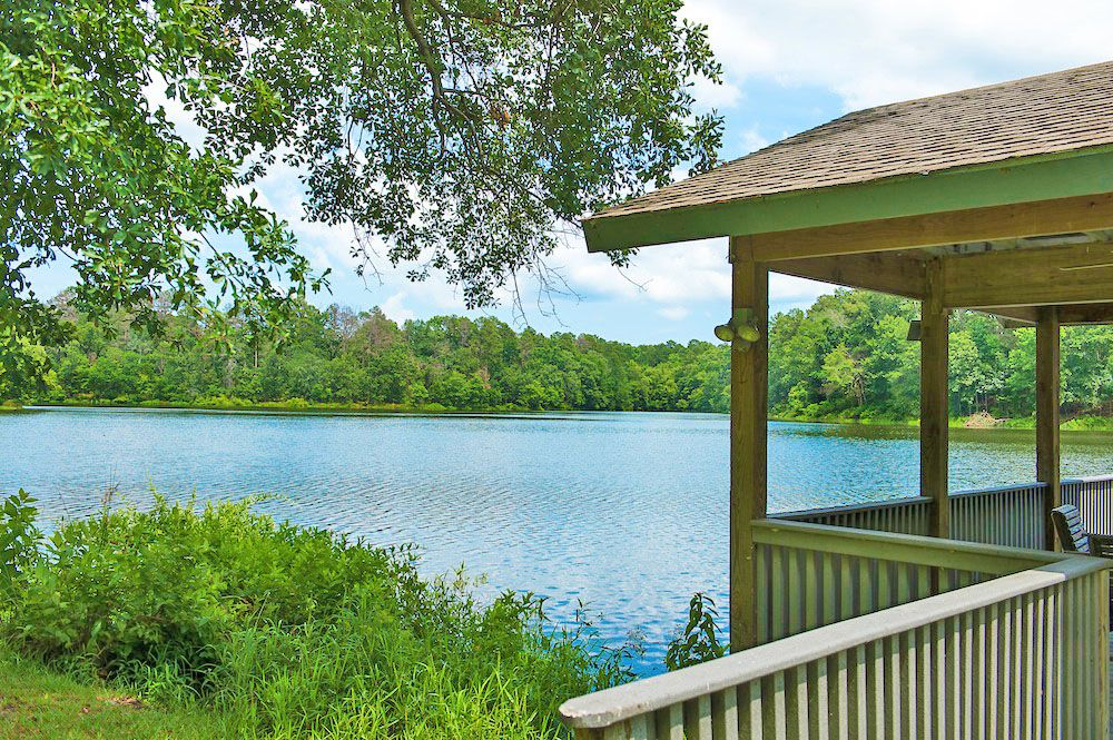 Lovely lake view from the Purley Gates Ranch - 131 Purley Gates, Winnsboro, Texas
