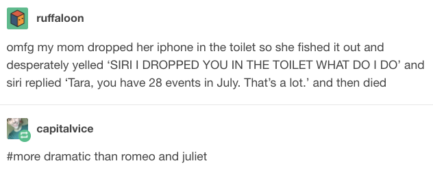 More Dramatic Than Romeo And Juliet Tumblr Stories Funny Stories Tumblr Funny
