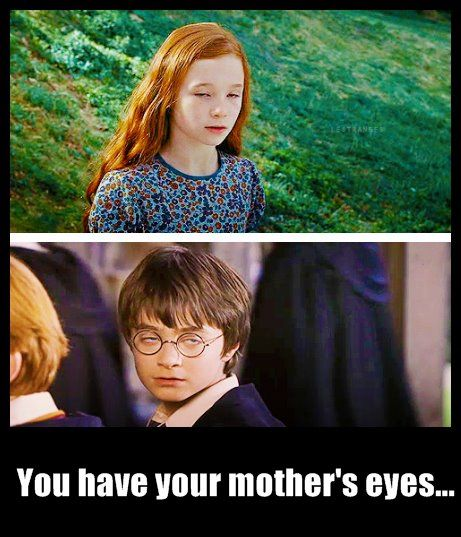 Tickled Our Funny Bone Harry Potter Jokes Harry Potter Memes Harry Potter Funny