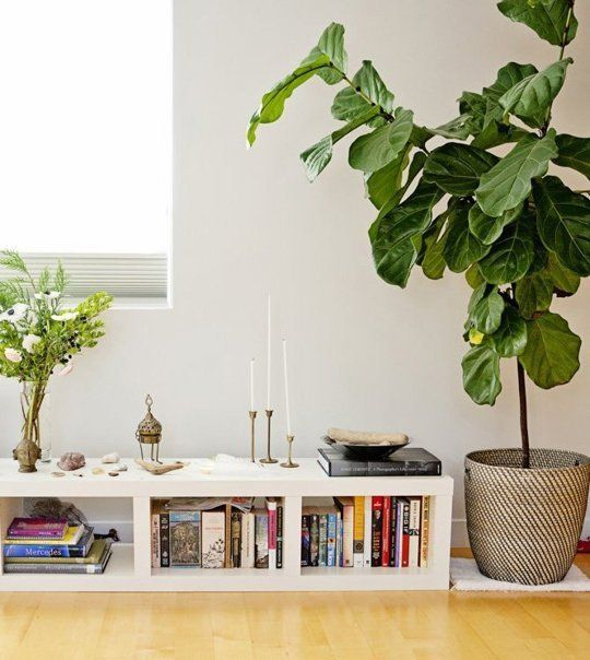 5 Habits To Steal from Yogis for a Happy Home Apartment therapy