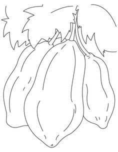 Papaya Coloring Pages On Pinterest Coloring Pages And For Kids Tree Coloring Page Coloring Pages Vegetable Coloring Pages