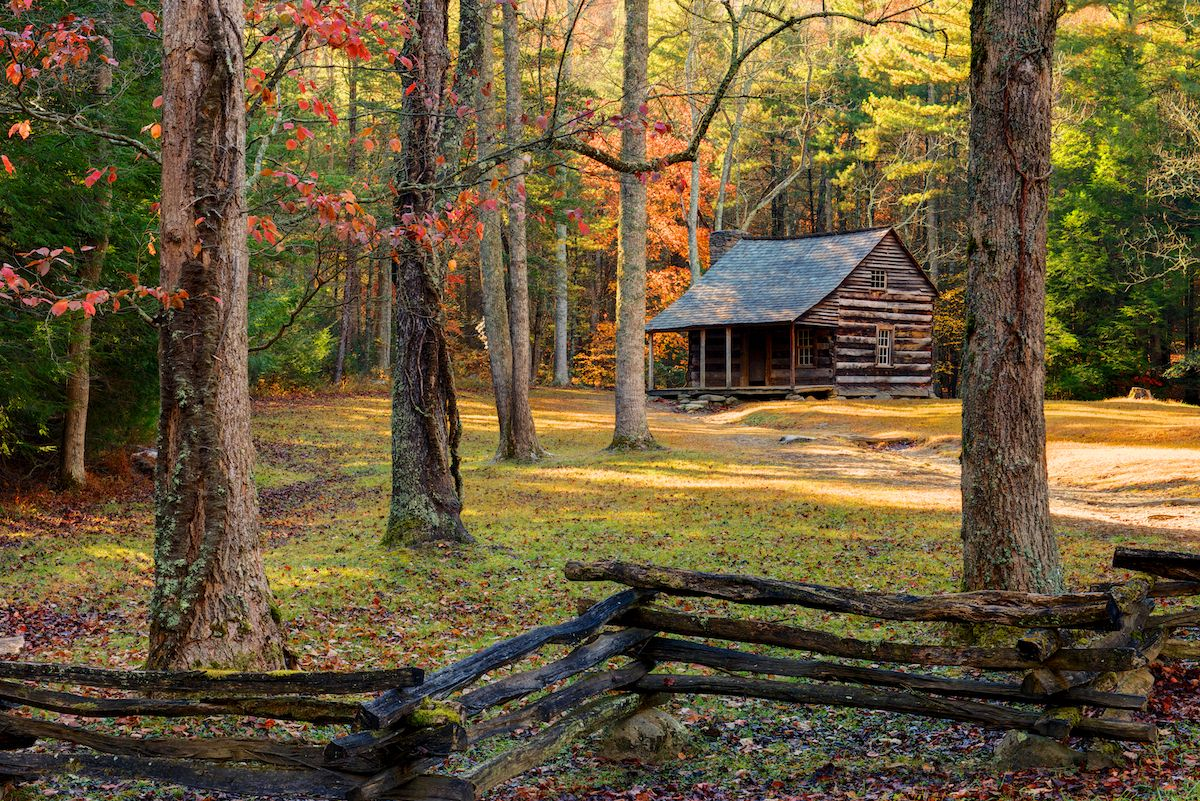 Carter Shields Cabin In Fall Cabin Log Cabins And Cove F C