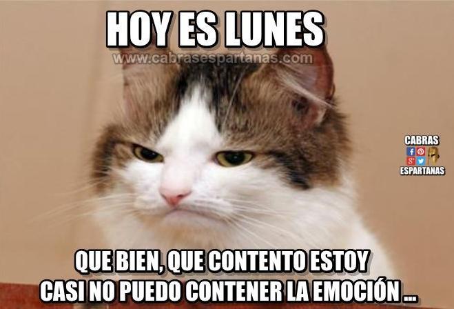Frases De Alegria Para Facebook: Lunes Feliz, Derrocho Alegría