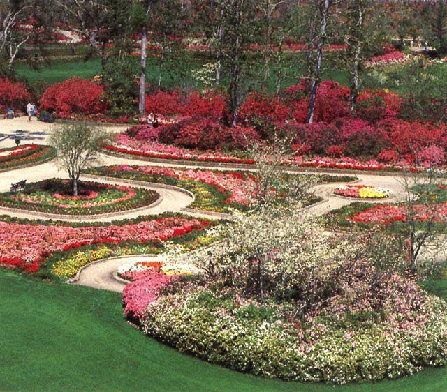 Pin de serkantas en Beautiful flowers Pinterest Flores - paisaje jardin
