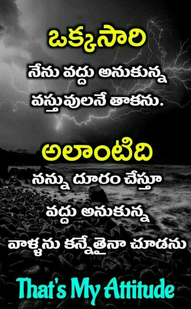 Dont Love Too Much Quotes In Telugu