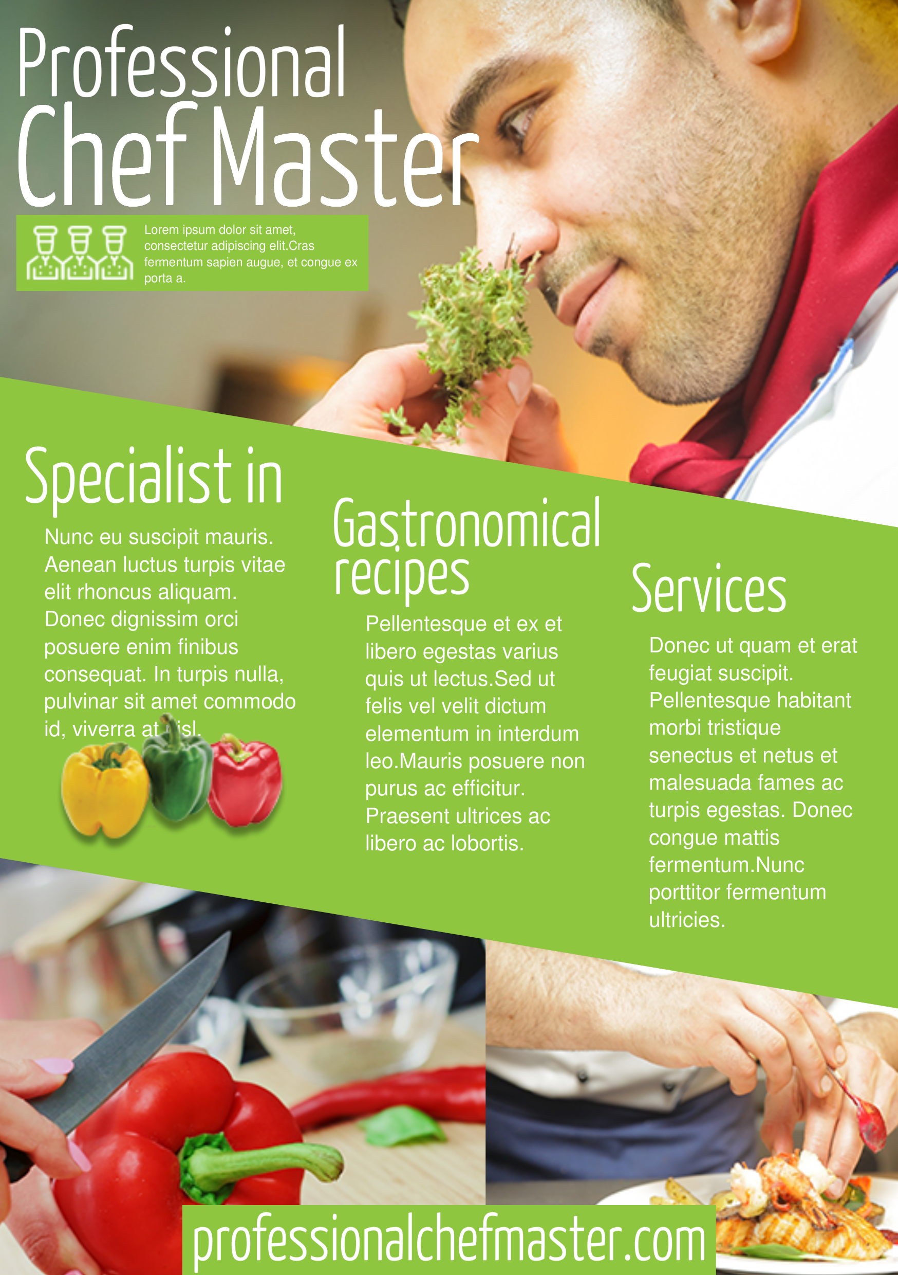 Chef A5 promotional flyer. http://premadevideos.com/a5-flyer ...
