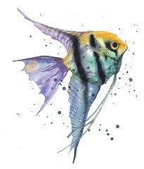 Watercolor Angel Fish Painting Watercolor Fish Paintings