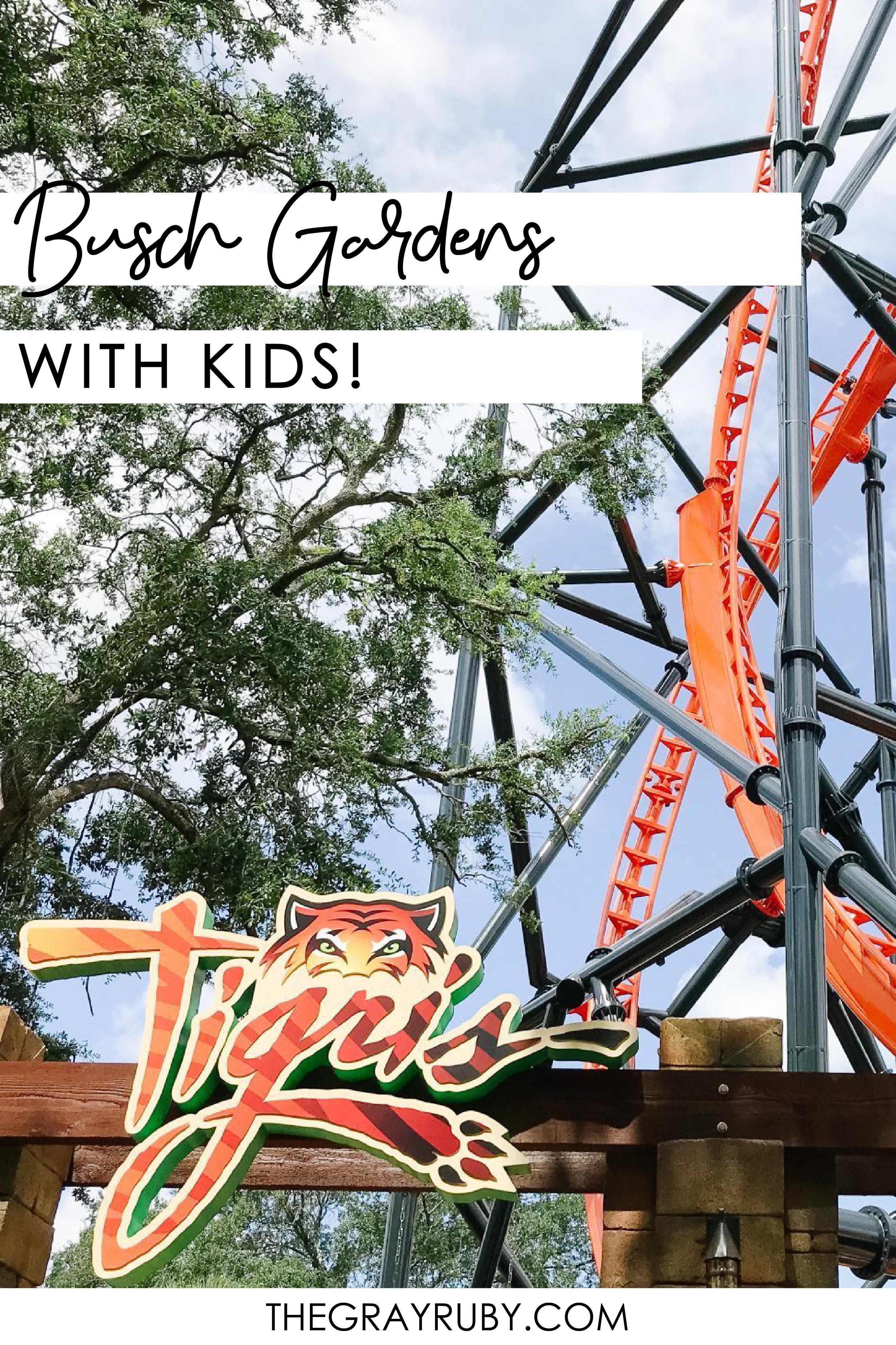 Busch Garden with kids in 2020 Busch gardens, Gardening