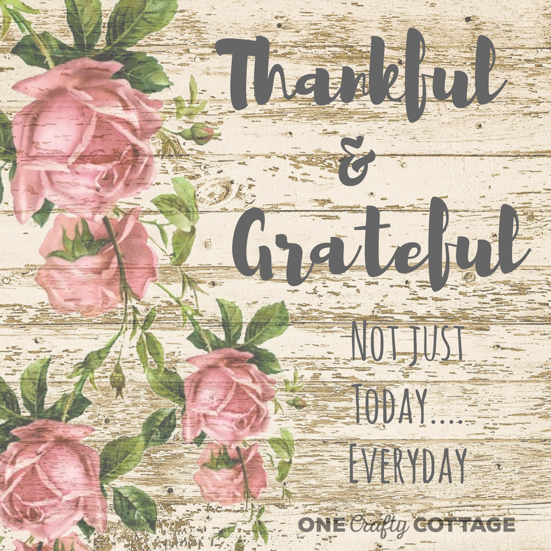 Thankful & Grateful, not just today everyday. #quotes