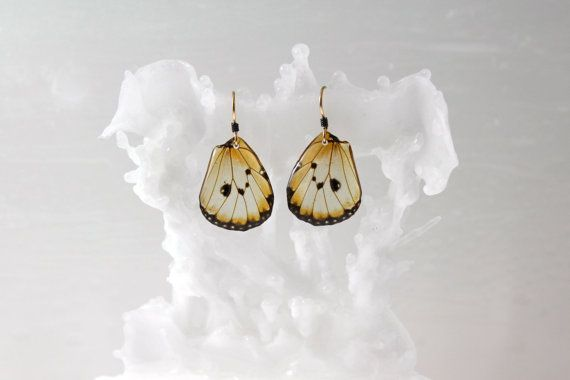 Real Butterfly Wing Earrings Choice of 8 butterfly wings by Isms