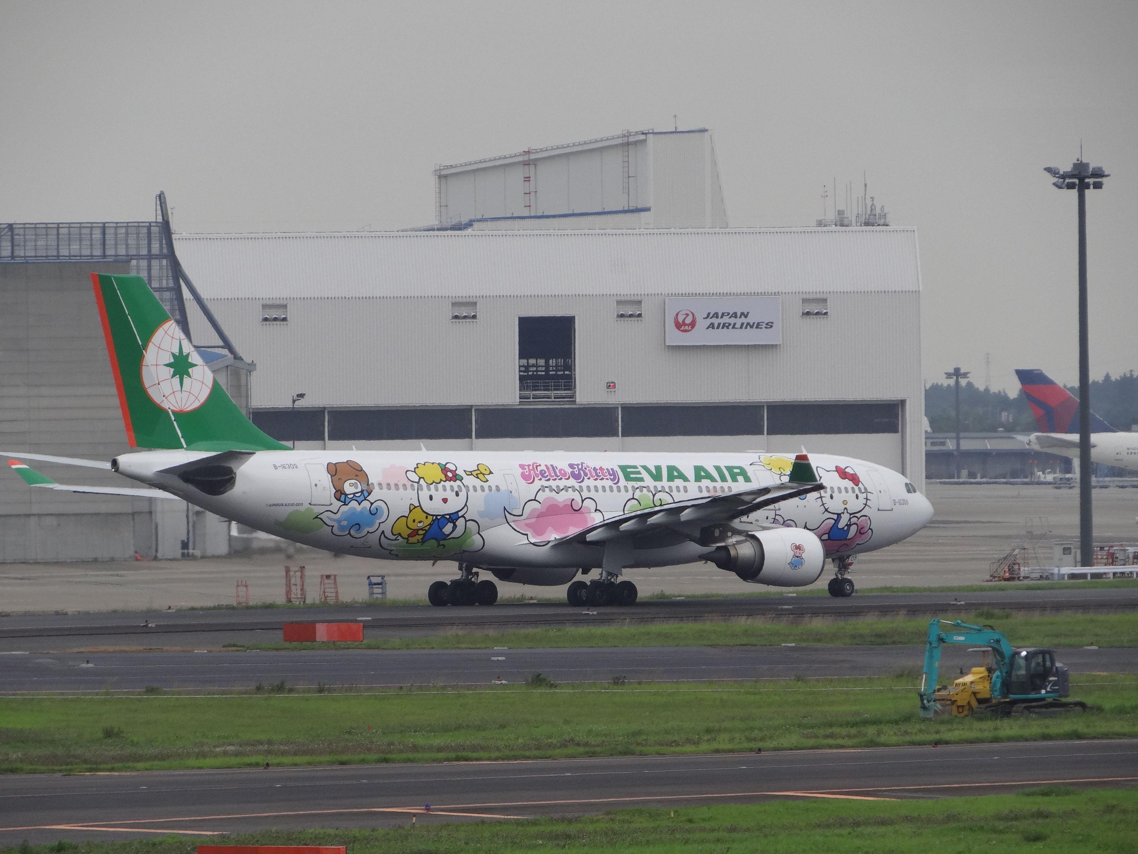 "EVA air A330, ""Hello, Kitty!"" jet. (Narita International"