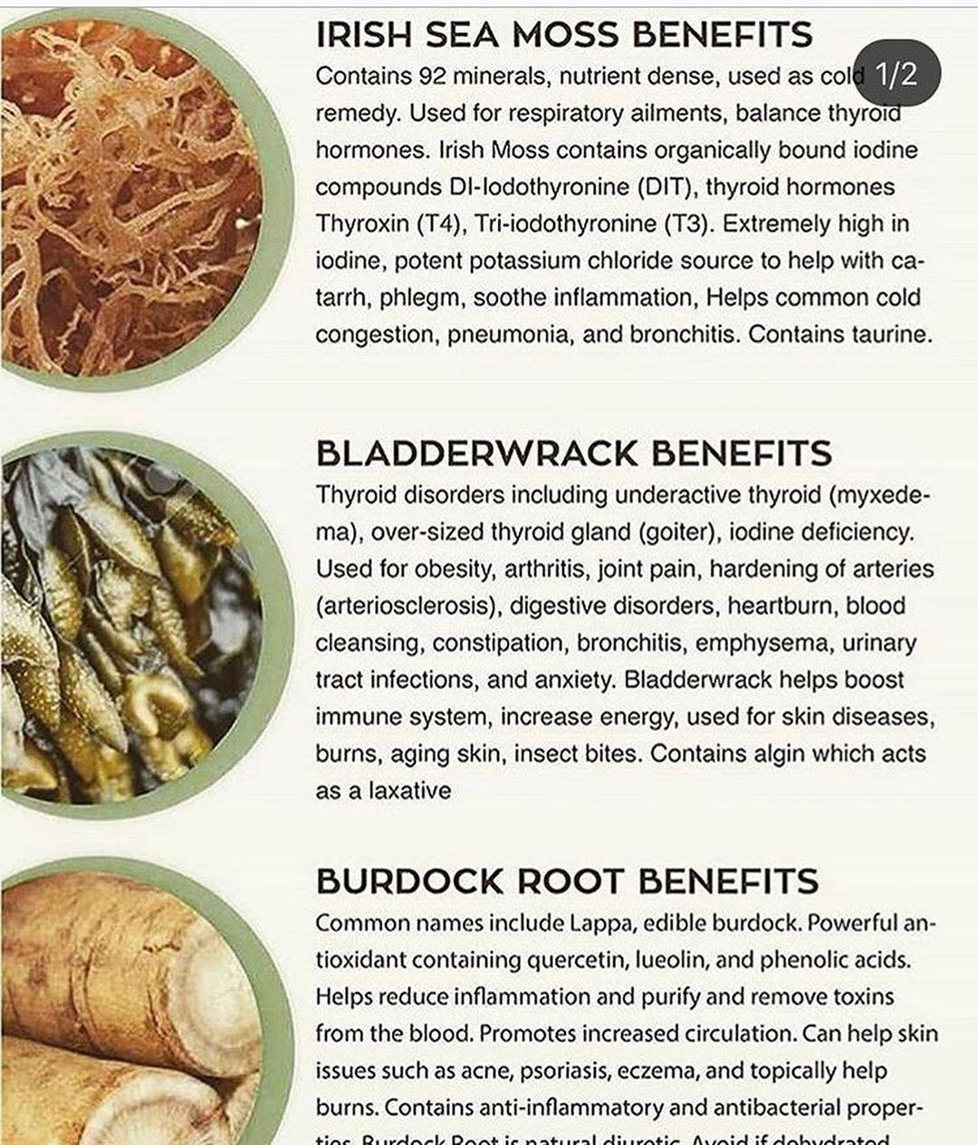 Healing Sea Moss On Instagram Who Wants To Feel This Amazing Try Sea Moss Gel Today Inbox Us Watch Your Healing Food Health Food Dr Sebi Alkaline Food