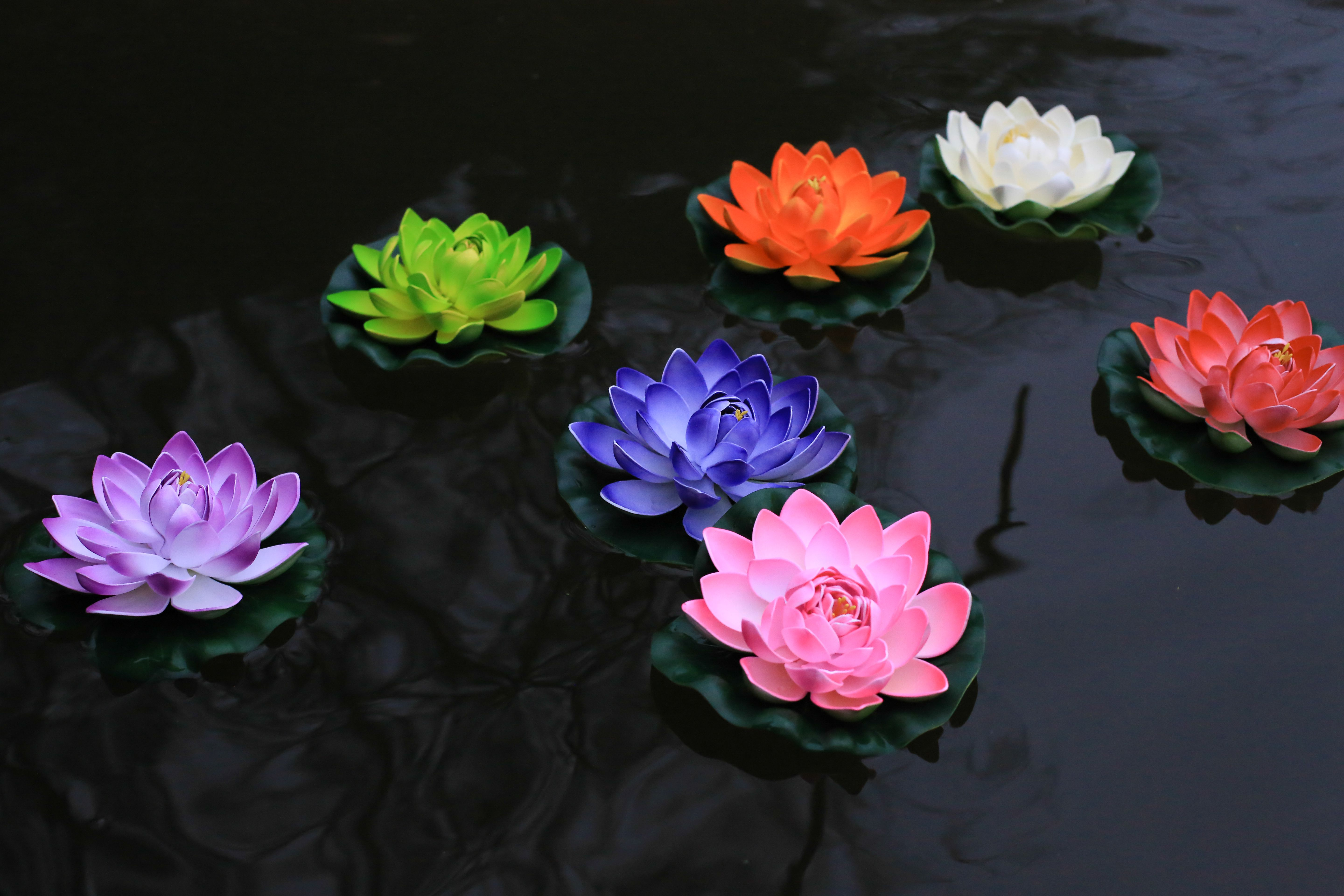 Decorate Your Pond Or Swimming Pool With Floating Flower Lanterns