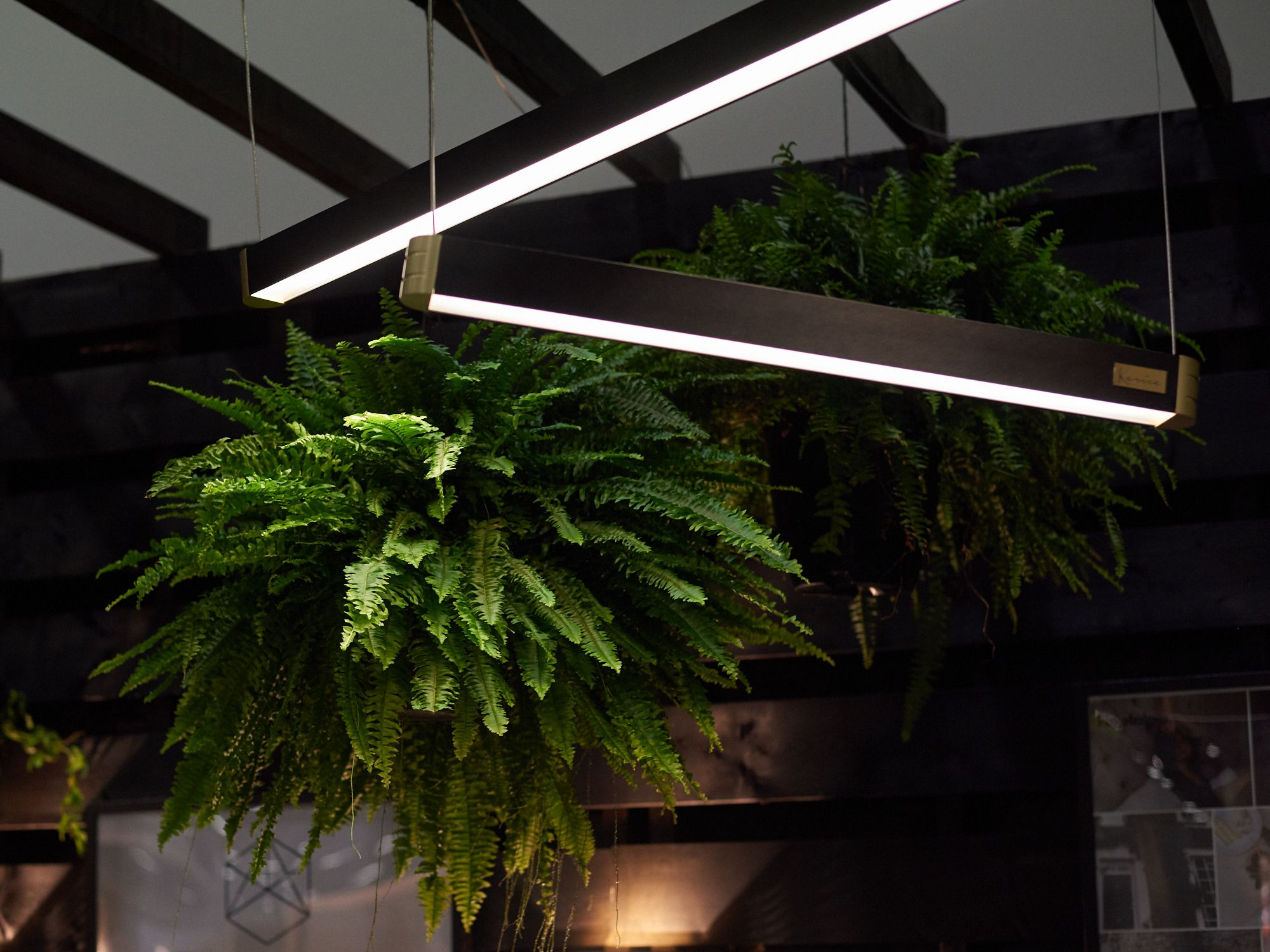 Retta linear light on display at ids vancouver lighting
