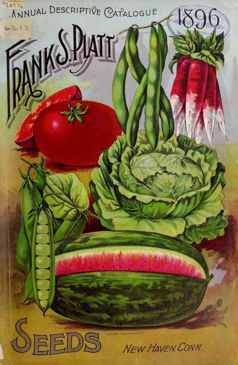 Annual descriptive catalogue 1896 seeds Flower seeds