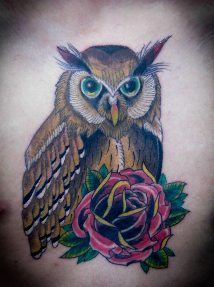 Coruja e rosa  By Roger Oliveira