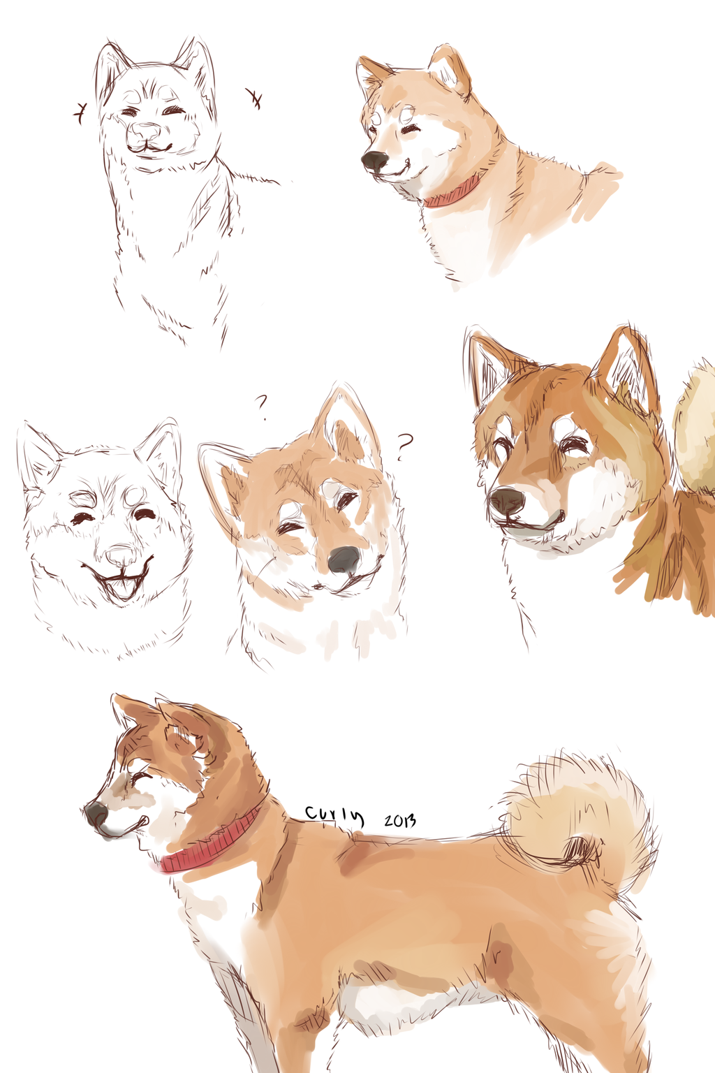 Shiba Inu By Curlyfruit On Deviantart Baby Animal Drawings Animal Drawings Cute Animal Drawings