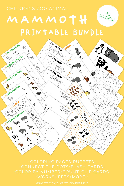 Kids Zoo Animals Complete Bundle 45 Pg Flash Cards