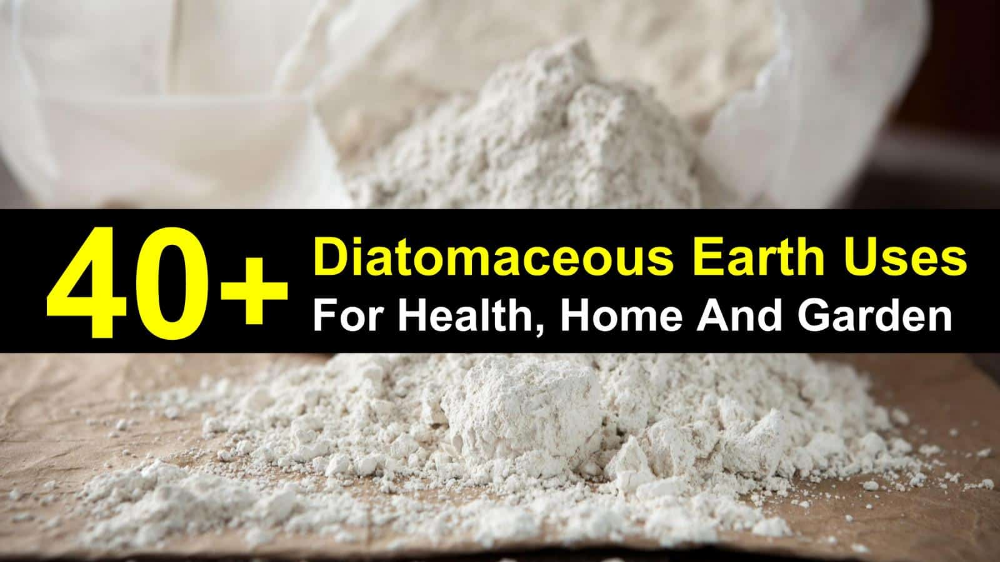 40+ Amazing Diatomaceous Earth Uses for Health, Home and