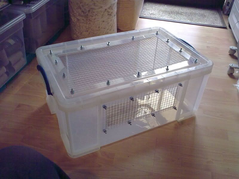 Need advice on bin cages hamster central hamsters for Diy hamster bin cage