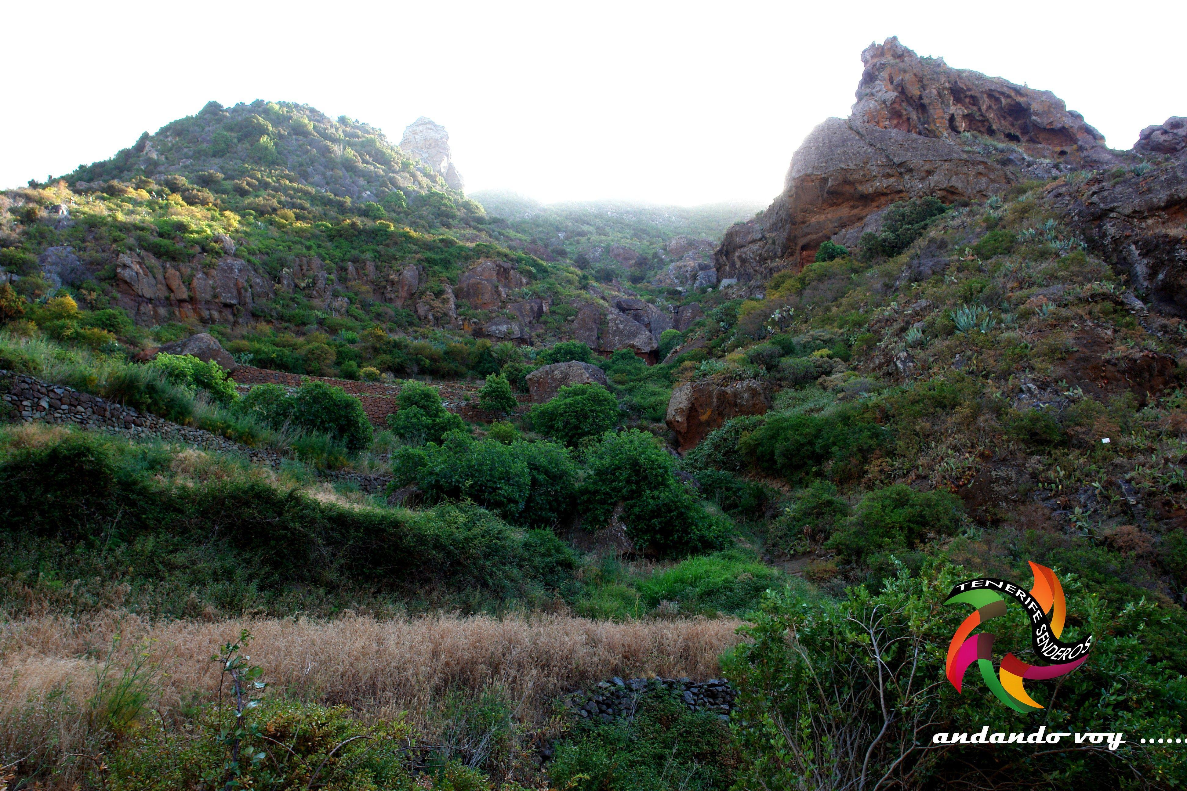 Barranco Tahodio #tenerife #landscape #hikingtenerife #canarias #tenerifesenderos #senderismo #trekking #hiking #hike #sky #nature #outdoors