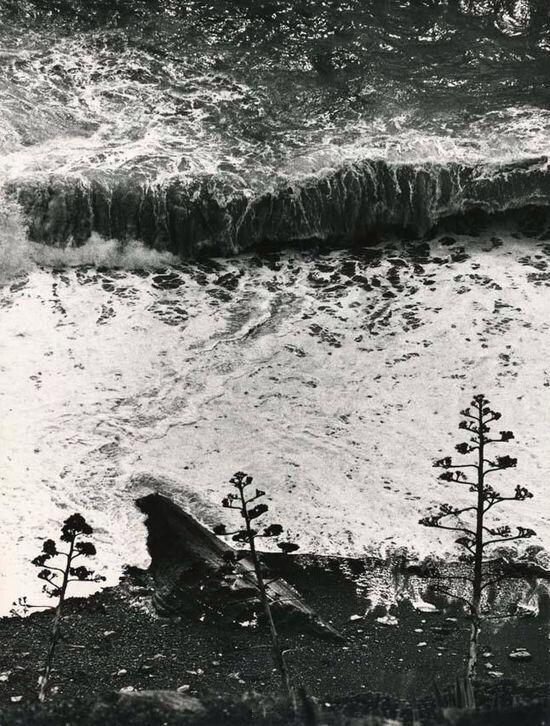 Ugo Mulas   Il Mare le onde 1965