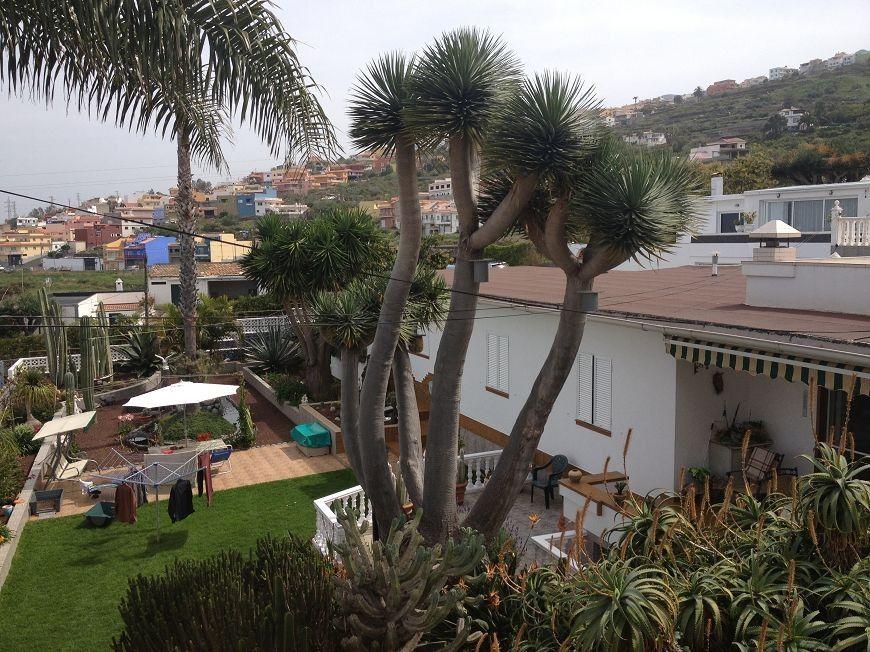 Atico Wohnung in Santa Ursula