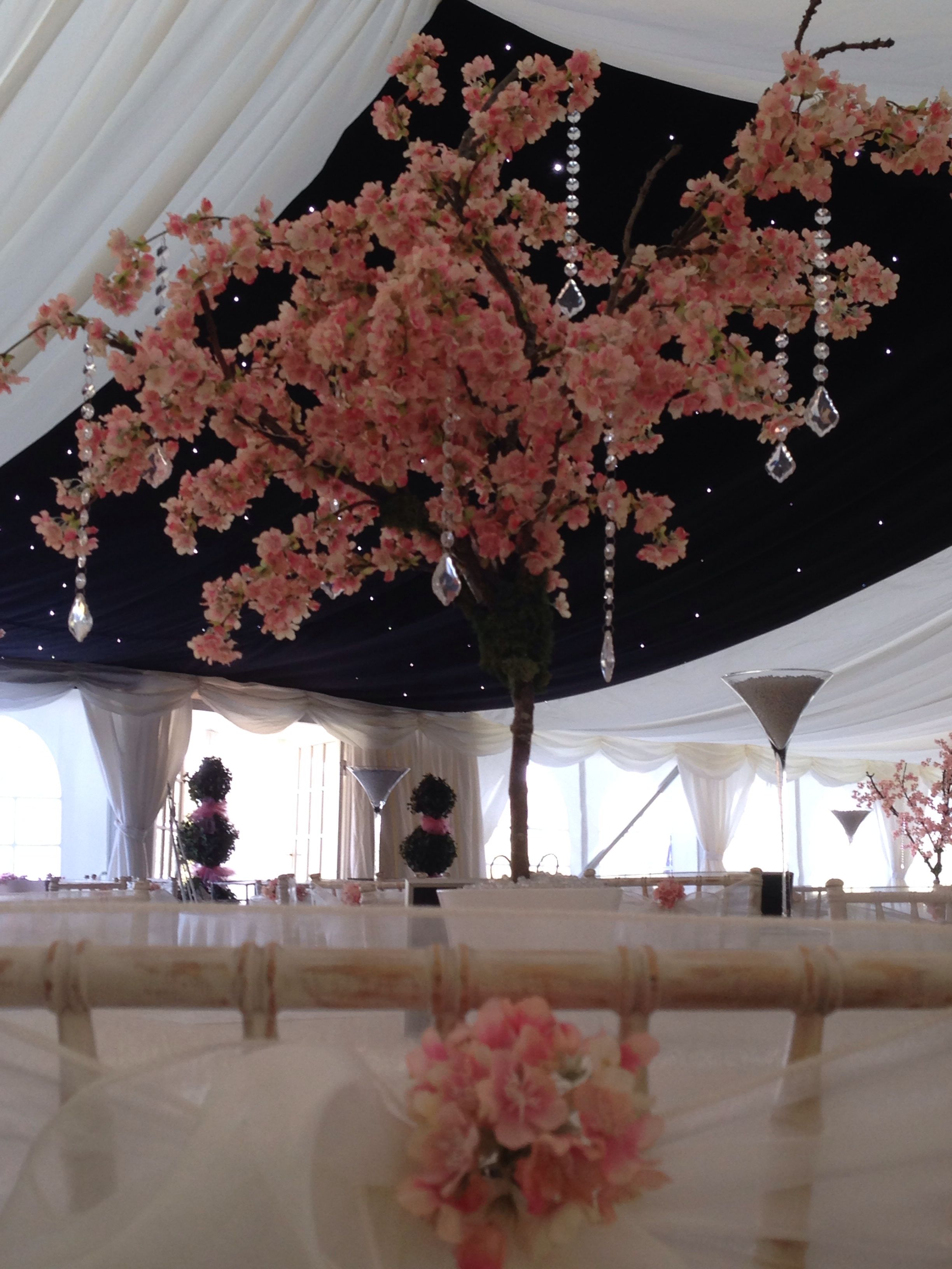 Pink Blossom In A Marquee Pink Blossom Tree Blossom Trees Pink Blossom