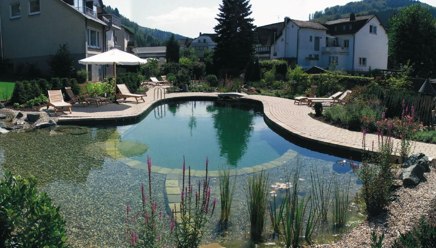 Natural Swimming Pools Ideas With Some Plants And Patio Design