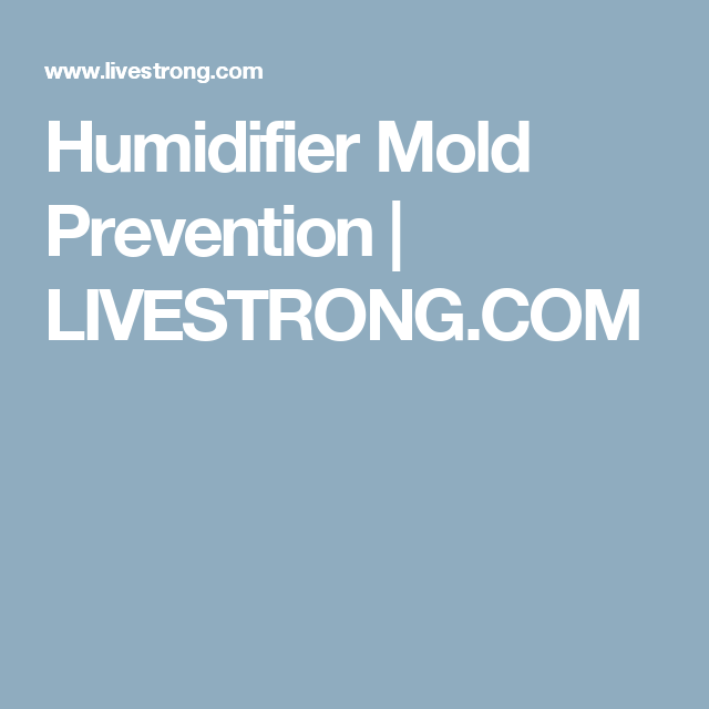 Humidifier Mold Prevention Mold Prevention Prevention Probiotics