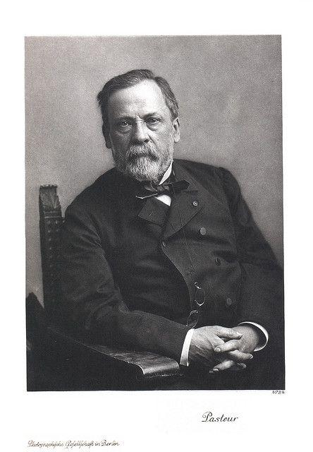 Portrait Of Louis Pasteur 1822 1895 Chemist Louis Pasteur
