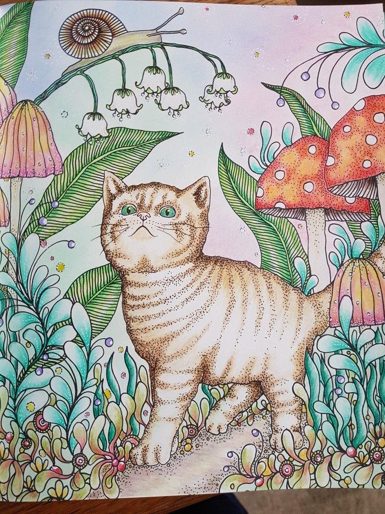 daydreams hannakarlzon kleurenvoorvolwassenen cat