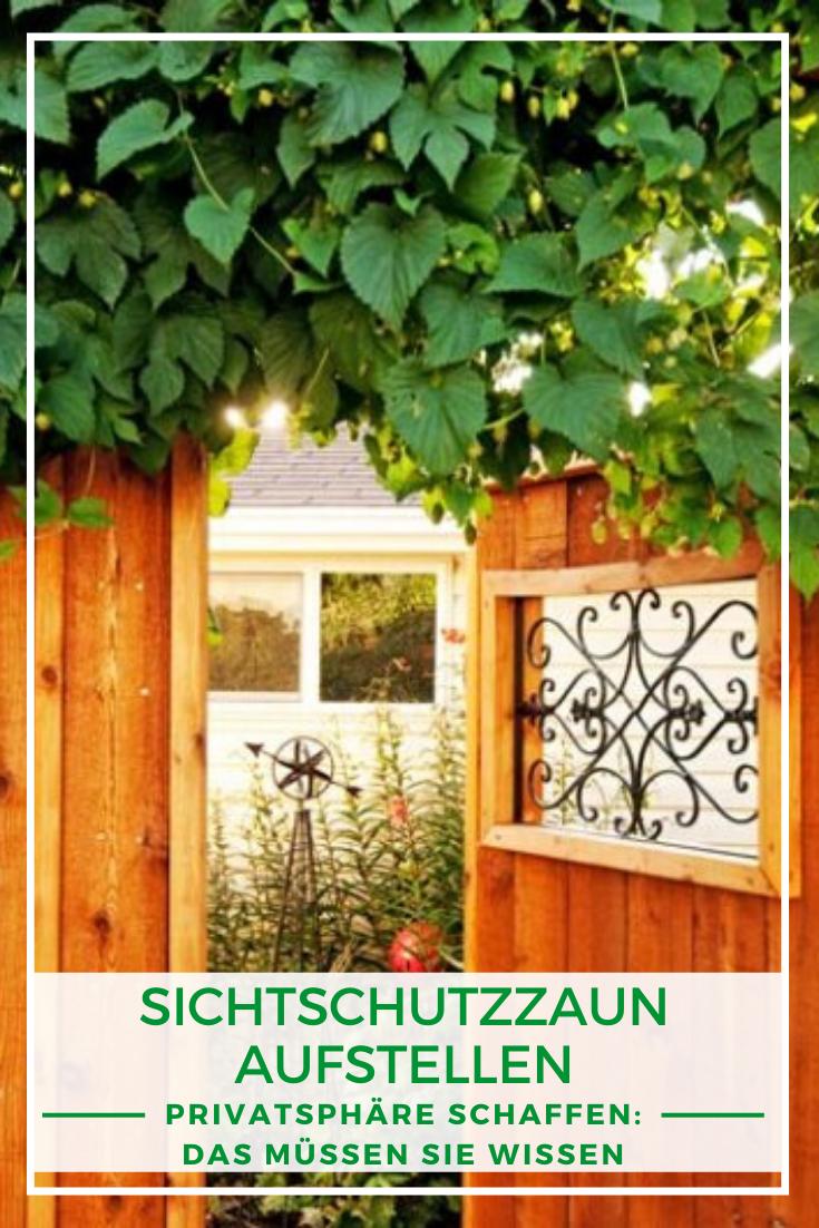 Sichtschutz Privatsphare Im Garten Das Mussen Sie Wissen In