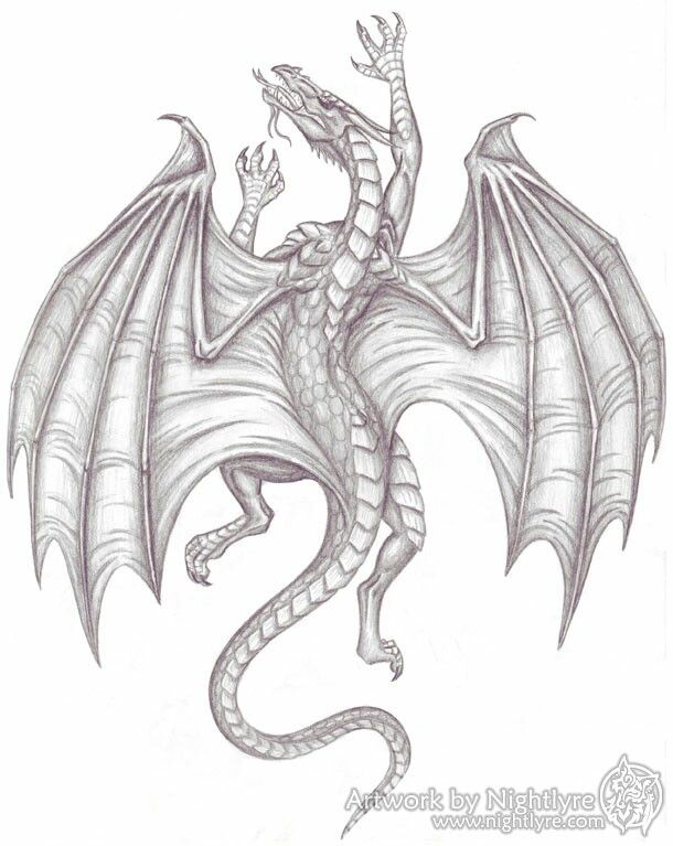 Climbing Medieval Dragon Vlci A Draci Tatuajes Dragones