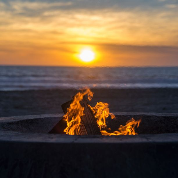 Use firelighters to start your beach bonfires easily ...