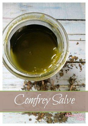 How to Make Comfrey Salve For Bumps, Bruises, Broken Bones
