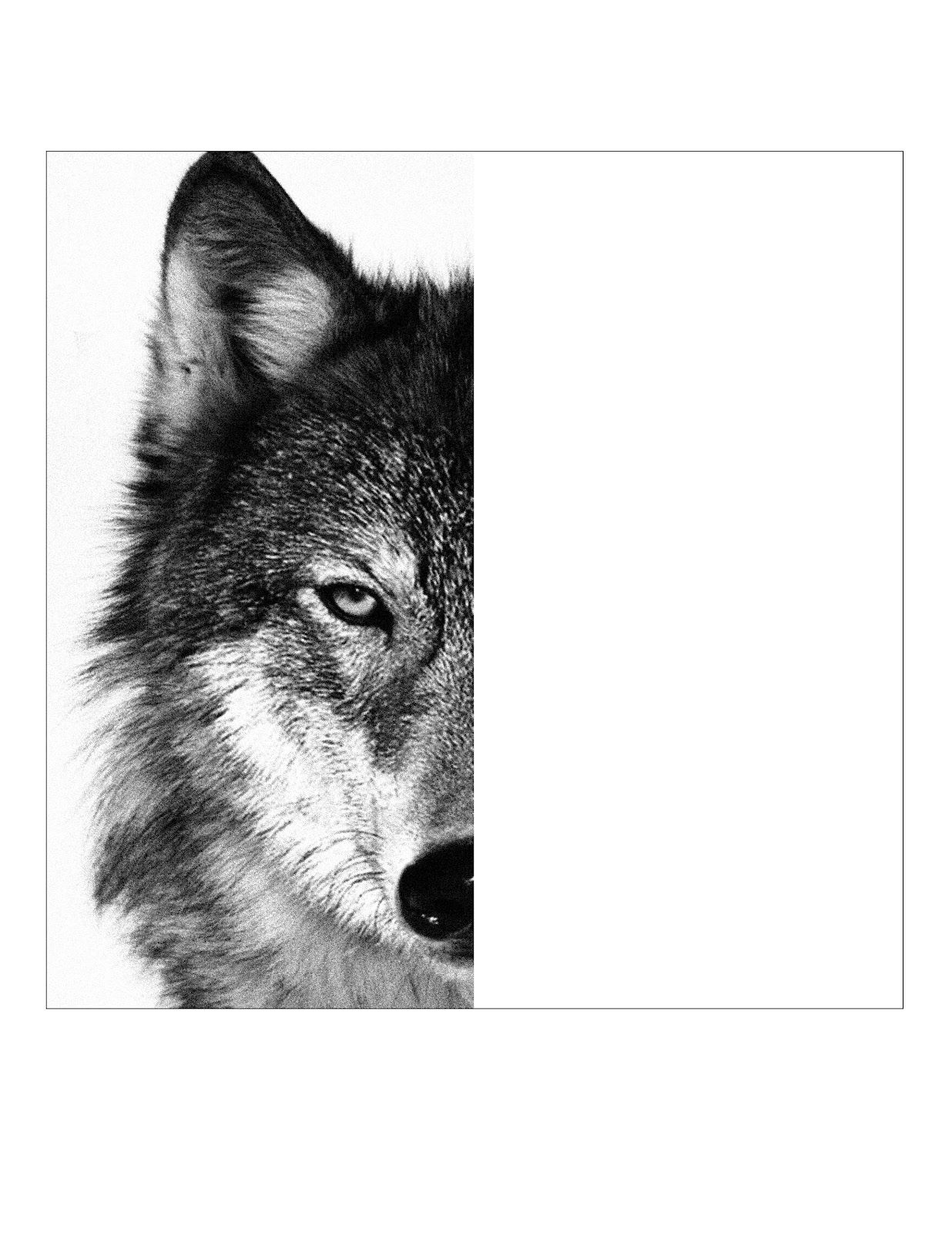art projects for kids wolf face template draw ideas pinterest