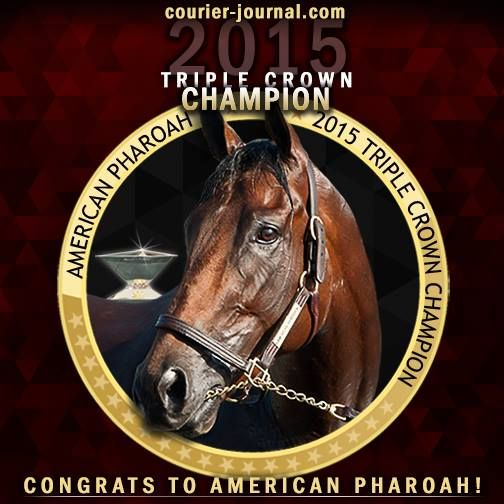 Wish California Chrome Could Have Won As Well But At Least We Broke The Dry Spell American Pharoah Horses Thoroughbred Horse Racing