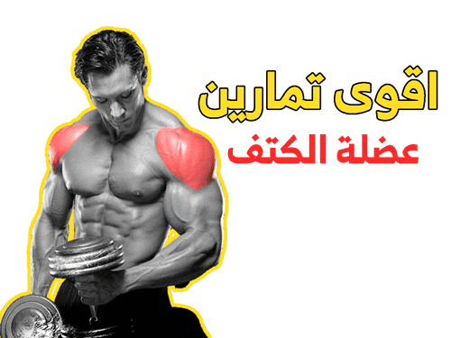 تمارين عضلة الكتف بالصور Shoulder Workout Workout Shoulder