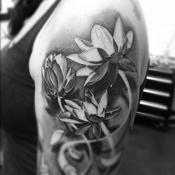 Realistic Black And Grey Lotus Tattoo