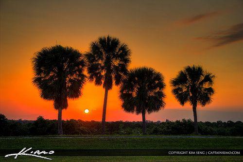 Passport Photos Palm Beach Gardens Fl