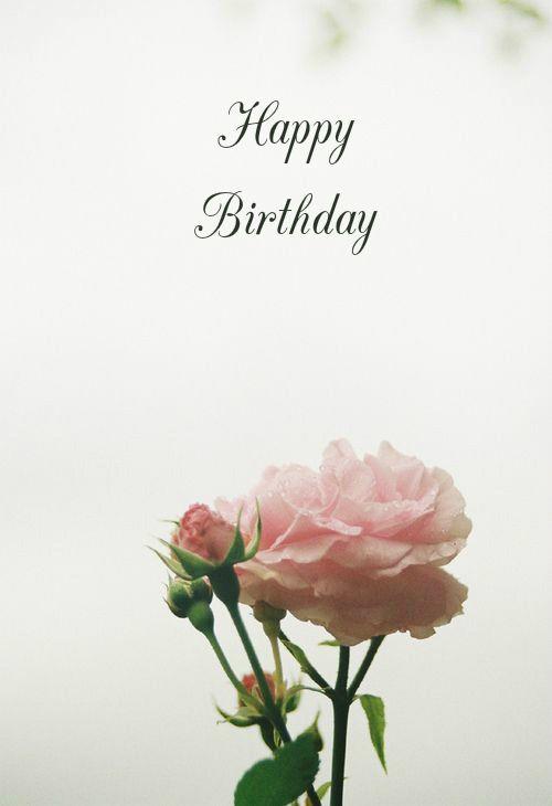 Hy Birthday Wish Flower Rose