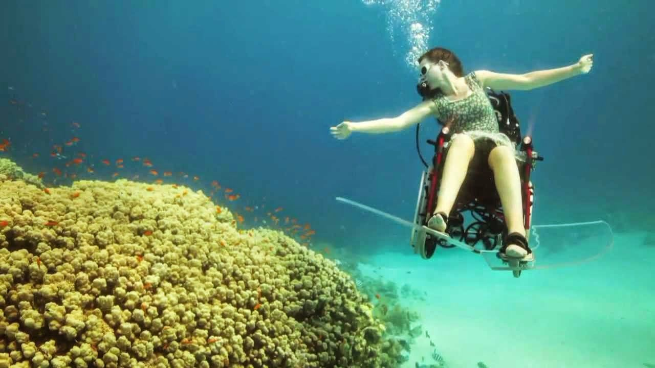 البريطانية Sue Austin تغطس في البحر الأحمر على كرسي متحرك شاهد الفيديو Underwater Underwater Art Photo