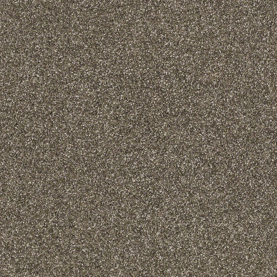 Stainmaster Petprotect Foundry Garden Soil Textured Indoor