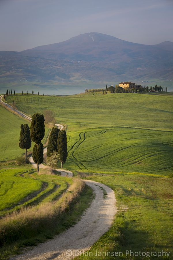 Cypress trees and winding road to villa near Pienza, Tuscany, Italy. © Brian Jannsen Photography   ..rh