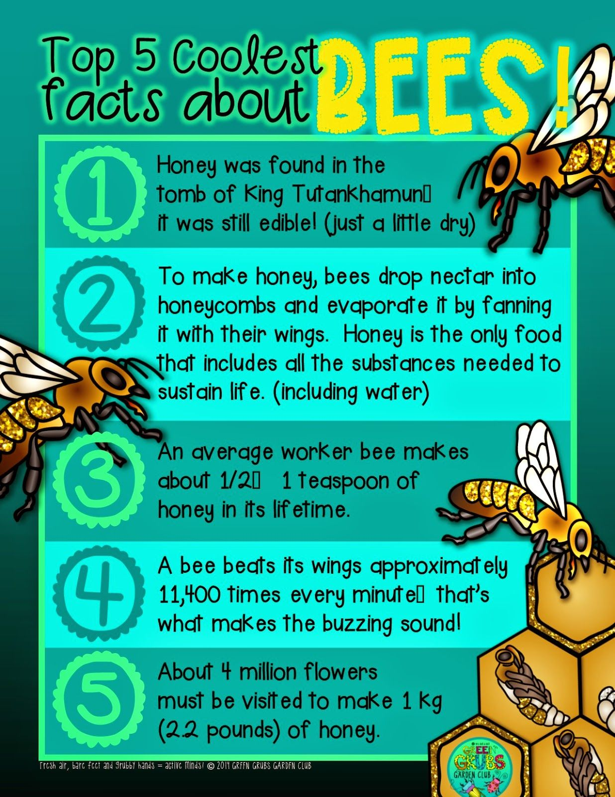 Free Printable Top 5 Coolest Facts About Honey Bees