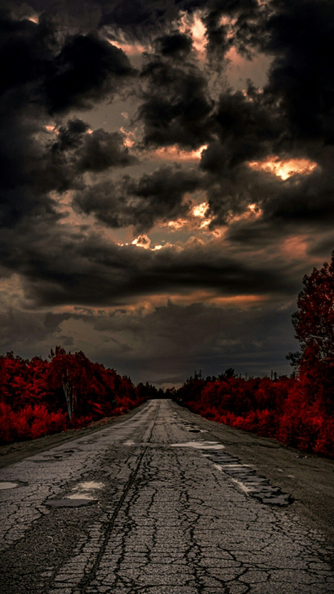☆ beautiful pictures . night road