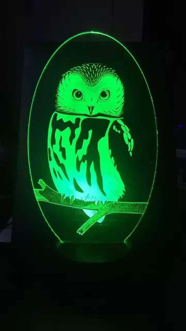 Jinson Well 3d Uhu Eule Adler Lampe Optische Illusion Nachtlicht 7 Farbwechsel Touch Switch Tisch Schreibtisch Dekoration Lampen Weihnachtsgeschenk Mit Acryl Fl