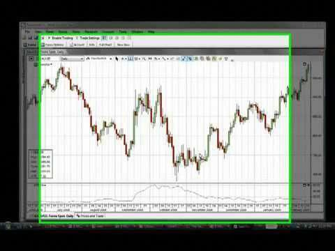 Make a forex analysis with laravel toturial